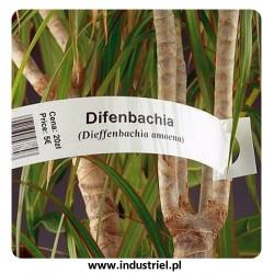 Etykiety pętlowe, szkółkarskie, pętelki do oznaczania roślin, 1,7x20cm, białe, 1 tyś. szt.